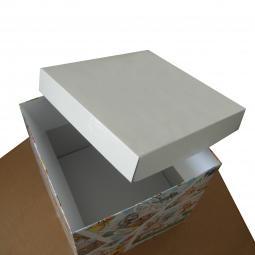 Scatola in cartone ondulato stampato a colori.  Dimensioni personalizzate.