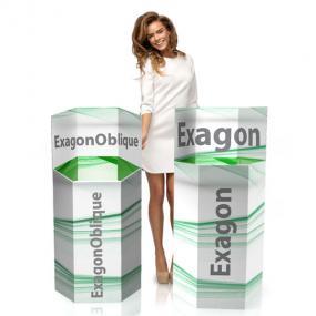 Espositori da Terra in cartone| Espositori in cartone per prodotti | Exagon_00.jpg